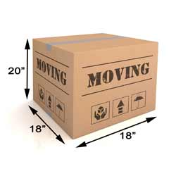 Removal Box (Medium) Image